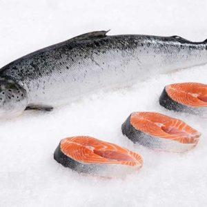 Norwegian Salmon Fillet
